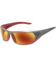 Bolle Blacktail glänsande antracit röd tns brand solglasögon