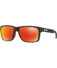 Oakley Oo9102 55 e9 holbrook solglasögon